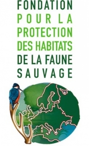 global compact-fondation faune sauvage
